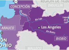 Reporte de casos por comuna en la región del Biobío